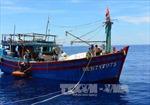 Kịp đưa 10 thuyền viên gặp nạn vào bờ an toàn