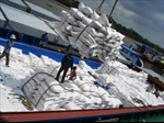 Xuất khẩu gạo Thái Lan trong 9 tháng đầu năm giảm