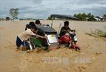 Số người thiệt mạng do bão Koppu tại Philippines tăng mạnh
