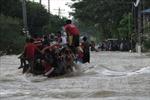 47 người thiệt mạng tại Philippines do bão Koppu