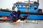 Tàu cá bị chìm tại Cà Mau do thời tiết xấu
