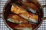 Nghệ An: Người dân nhập viện không phải ngộ độc do ăn cá nục