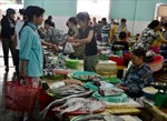Đà Nẵng mở các điểm bán cá sạch