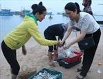 Hàm lượng kim loại nặng trong hải sản ở Hà Tĩnh trong mức cho phép