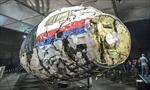 Bellingcat: MH17 bị tên lửa thuộc Lữ đoàn Nga bắn hạ
