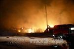Hỏa hoạn thiêu rụi một xưởng sản xuất giấy tại Bình Dương