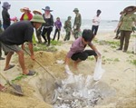 Hỗ trợ ngư dân bị ảnh hưởng cá chết kịp thời, đúng đối tượng