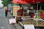 """Nguy hiểm """"họp chợ"""" trên đường"""