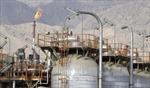 Giá dầu, giá vàng cùng xuống dốc