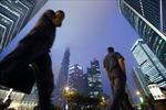 500 doanh nghiệp hàng đầu Trung Quốc lần đầu bị giảm doanh thu