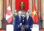 Chủ tịch nước tiếp Bộ trưởng Ngoại giao Canada
