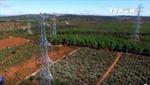 EVN giải thích ý tưởng xây đài vinh danh công trình 500 Kv Bắc-Nam
