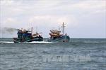 Cứu sống 11 thuyền viên trên tàu cá chết máy, trôi dạt trên biển