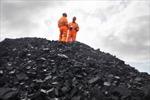 Formosa đã nhập gần 668.000 tấn than