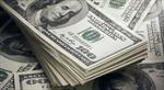 Chỉ số USD chạm mức cao nhất 13 năm rưỡi