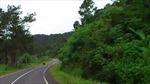 Thủ tướng cho phép cải tạo đường qua đèo Mimosa