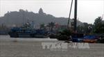 Đề nghị cho tàu cá Việt Nam vào tránh bão tại Philippines và Indonesia