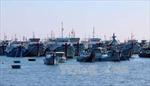 Ứng phó bão số 8, Bình Thuận cấm tàu thuyền ra khơi