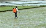 Miền Trung chủ động phó mưa lũ