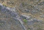 Phát hiện thành phố cổ 2.500 năm tuổi ở Hy Lạp