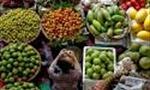 Tạo thương hiệu mạnh để giảm xuất khẩu nông sản dạng thô