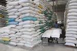 Hỗ trợ khẩn cấp 2.000 tấn gạo cho người dân vùng ngập lũ Bình Định