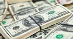 Dự báo năm 2017: Giới đầu tư ngại nắm giữ đồng USD