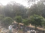 Mưa trái mùa kéo dài trong ngày 28 Tết