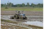 Mưa làm ngập nhiều diện tích lúa vừa gieo sạ ở Thừa Thiên - Huế