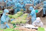 Xuất khẩu thủy sản ước đạt 518 triệu USD