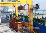 Hơn 600 doanh nghiệp chưa nộp phí hạ tầng cảng biển tại Hải Phòng