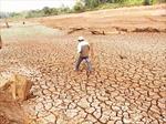 Có sai phạm trong hỗ trợ khắc phục hậu quả hạn hán ở Cư M'gar, Đắk Lắk