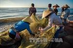 Khắc phục 'thẻ vàng'IUU: Giải pháp giúp ngư dân chủ động khai thác hải sản an toàn