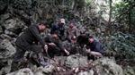Kiên quyết xử lý các sai phạm liên quan vụ phá rừng ở Vườn Quốc gia Ba Bể