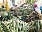 Bốn tỉnh duyên hải phía Đông Nam Bộ tìm cơ hội liên kết phát triển