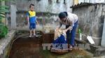 Nguy cơ bệnh tật khi sử dụng nguồn nước bị ô nhiễm