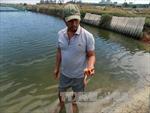 Khánh Hòa: Xử phạt Nhà máy đường 3 tỷ đồng vì gây ô nhiễm