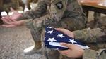 Lầu Năm Góc xác nhận 3 binh sĩ Mỹ thiệt mạng trong cuộc phục kích tại Niger