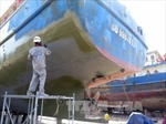 Bình Định tiếp tục lấy mẫu vỏ thép tàu cá để kiểm định