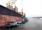 Gia hạn hoạt động xuất khẩu gạo cho 9 đơn vị