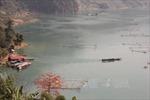 Ô tô lao xuống hồ thủy điện Sơn La, hai người tử vong