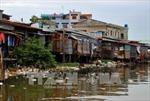 Cà Mau: Phát hiện thêm doanh nghiệp để rò rỉ nước thải ra sông Gành Hào