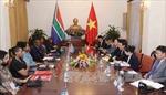 Phó Thủ tướng Phạm Bình Minh hội đàm với Bộ trưởng Ngoại giao và Hợp tác CH Nam Phi