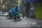 Thêm một người chết do bão số 10 tại Thanh Hóa