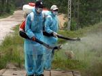 Hà Tĩnh hướng dẫn người dân phòng chống dịch bệnh và xử lý môi trường sau bão