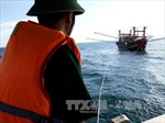 Cứu hộ tàu cá bị trôi dạt, đưa 10 ngư dân vào bờ an toàn