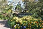 Khu vườn mùa xuân đẹp nhất ở Sydney