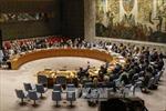 Nga, Trung Quốc tẩy chay cuộc họp của Hội đồng Bảo an về Venezuela