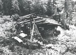 Gia đình 'người rừng' Siberia tuyệt giao với thế giới loài người suốt 40 năm