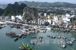 Quảng Ninh lấy ý kiến tham gia dự án Luật đơn vị hành chính kinh tế đặc biệt